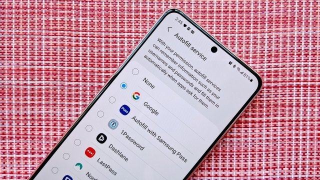 Autofill Managers Android 11 Galaxy S