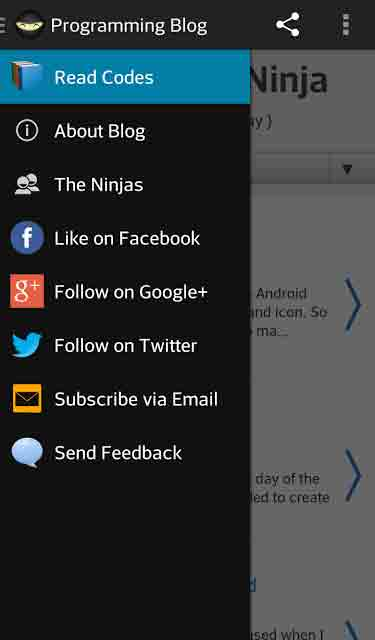 The Navigation Drawer. You can see this view if you click the  ninja icon on the upper left corner OR did a swipe from left to right.