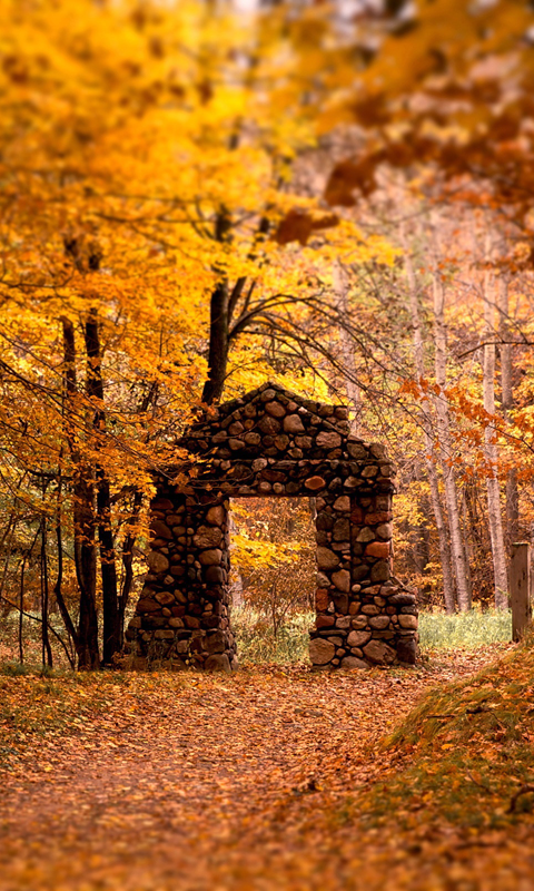Fall Wallpaper For My Phone Autumn Wallpapers Android App Free Apk By Peaksel