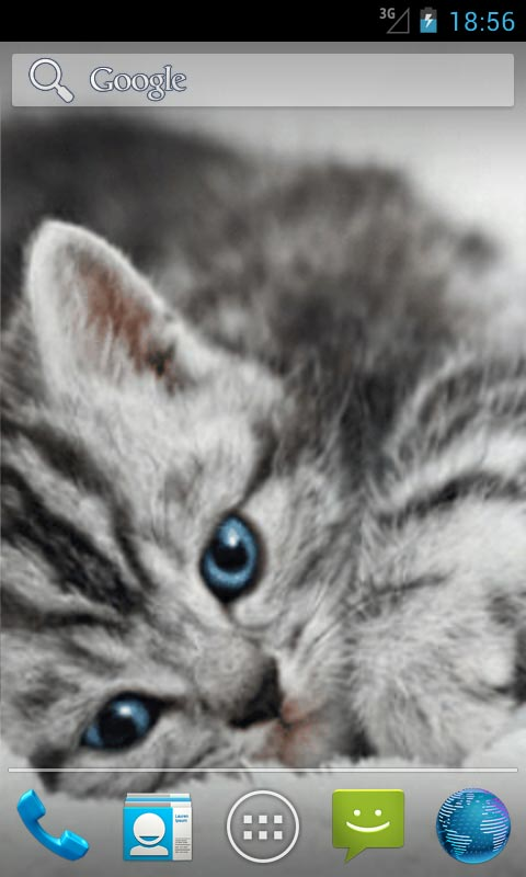 Animation Wallpaper Android Cute Cat Live Wallpapers Android App Free Apk By Ozhar