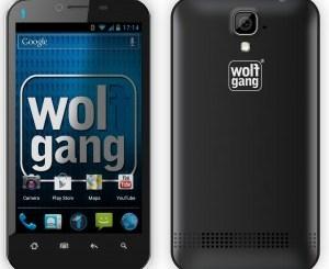 wolfgang-300x267