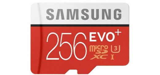 Samsung 256GB EVO micro SD
