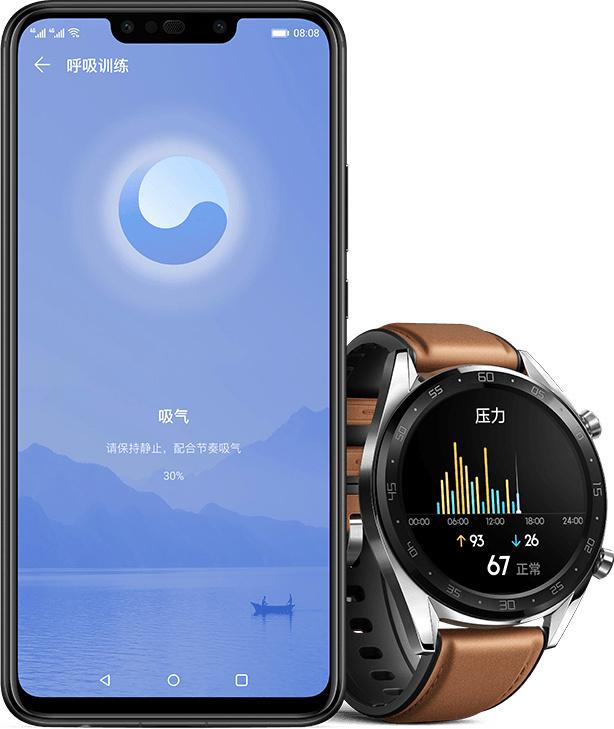 Huawei-Watch-GT-EMUI-9