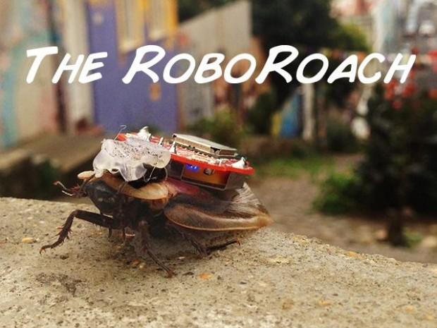 Die RoboRoach, samt elektrischem Rucksack zum Fernsteuern, in Aktion. (Bild: Backyard Brains)