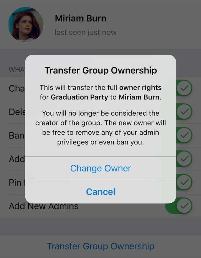Telegram transferencia grupo
