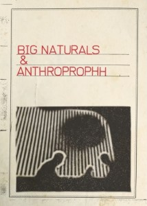 Review of Big Naturals and Anthroprophh – S/T on Cardinal Fuzz and Captcha Records