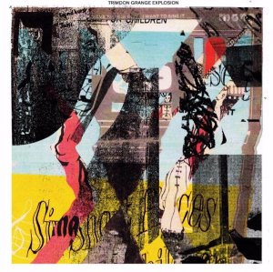 Review of Trimdon Grange Explosion s/t album on Cardinal Fuzz and Feeding Tube Records