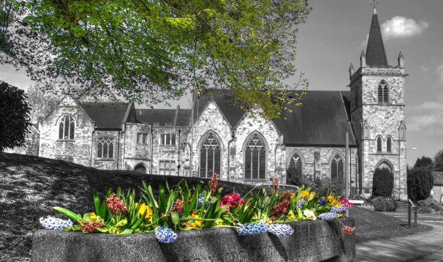 Church. Enhanced black and white photograph of a country church with steeple and large gothic arched windows, framed by sweeping tree branches at the top and a water trough filled with hyacinths at the bottom. The leaves of the tree are picked out in green and the hyacinths in their natural colours. © Copyright Andy Huntley photography