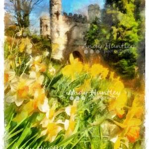 Reigate Castle in Springtime