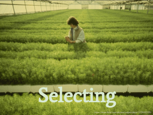 Selecting