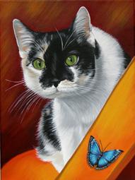 Katzenportraits nach Foto gemalt einzigartige Kunstwerke