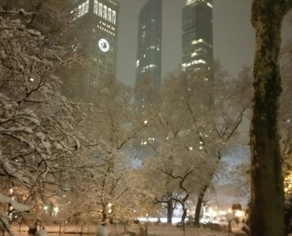 Winter in Madison Square Park