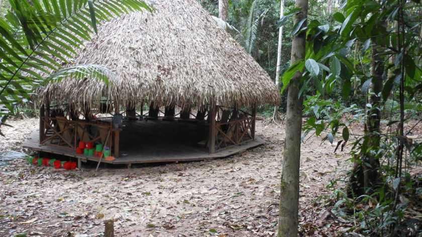 Ayahuasca Healing: Ayahuasca Maloca in Peruvian Amazon