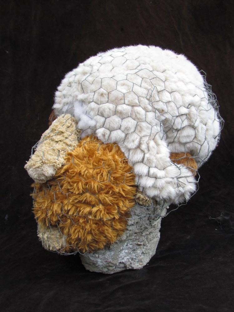 Stuffie Head
