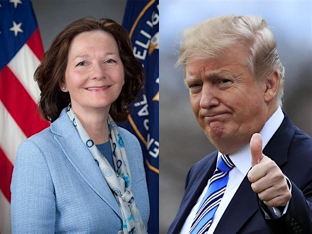 Image result for gina haspel trump