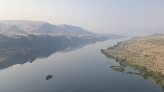 Columbia River Reflections