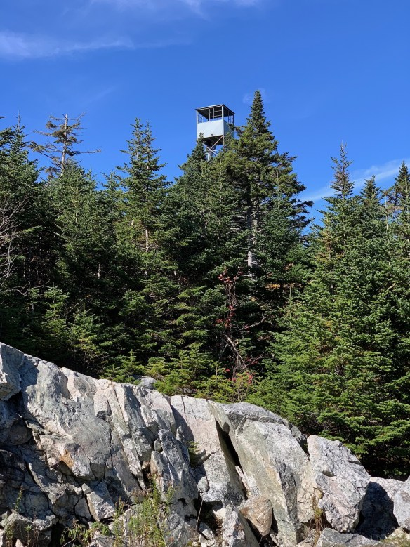 Fire tower in the forest.