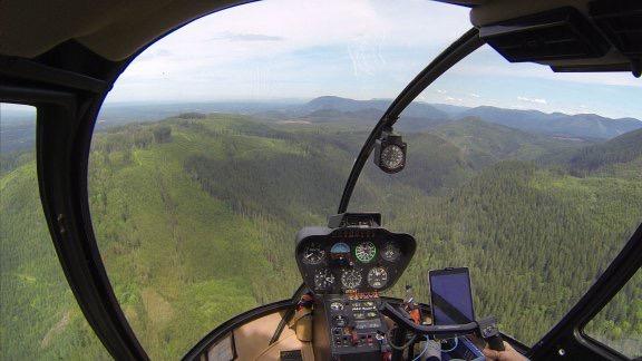 Over Logged Terrain