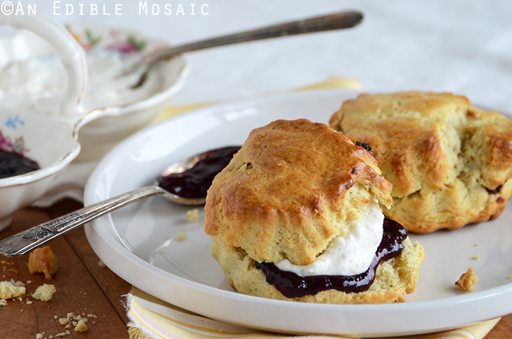 Cherry-Vanilla Sour Cream Scones with Vanilla Cream Spread 3