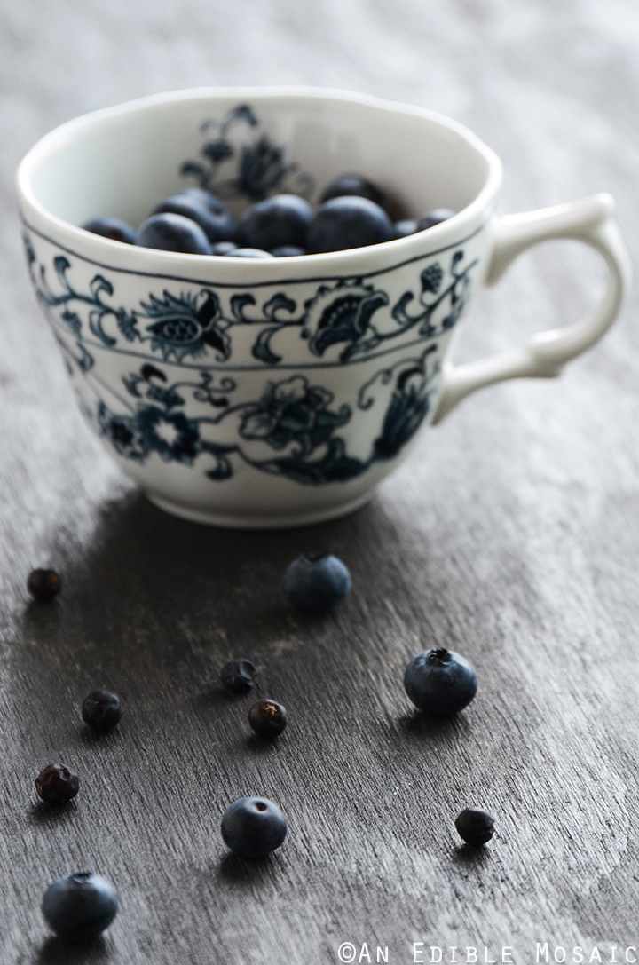 Fresh Blueberries and Dried Juniper Berries