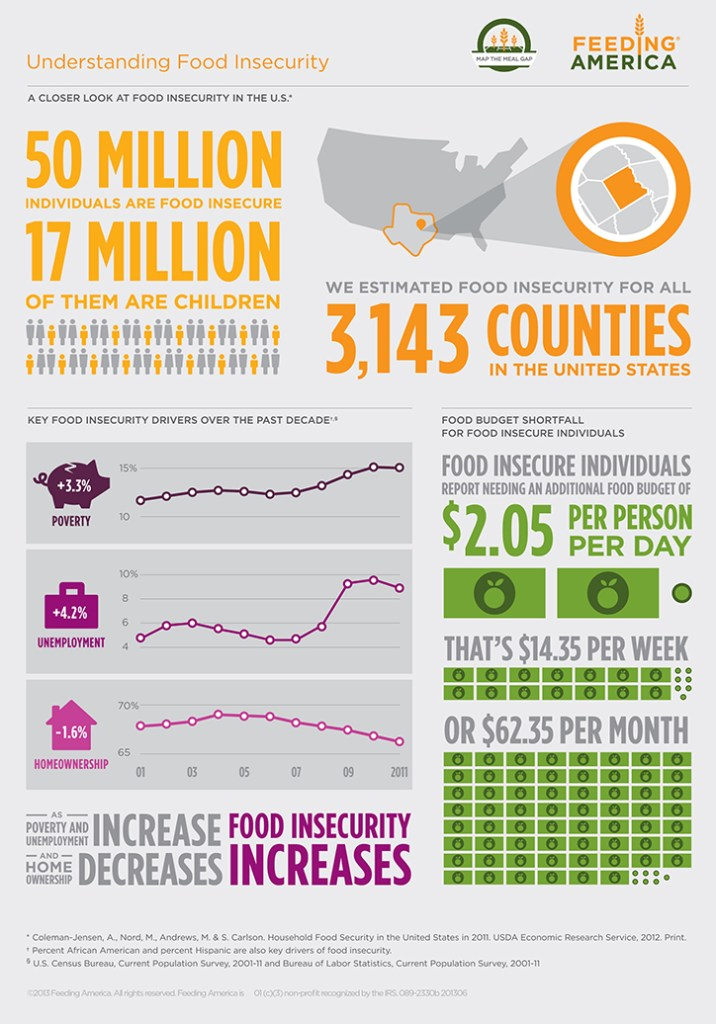 Understanding Food Insecurity