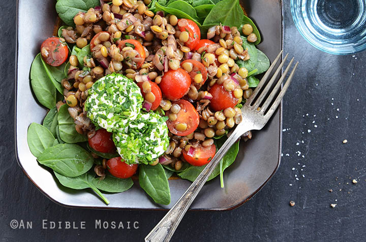 Lentil Salad with Herbed Goat Cheese and Balsamic Vinaigrette 3