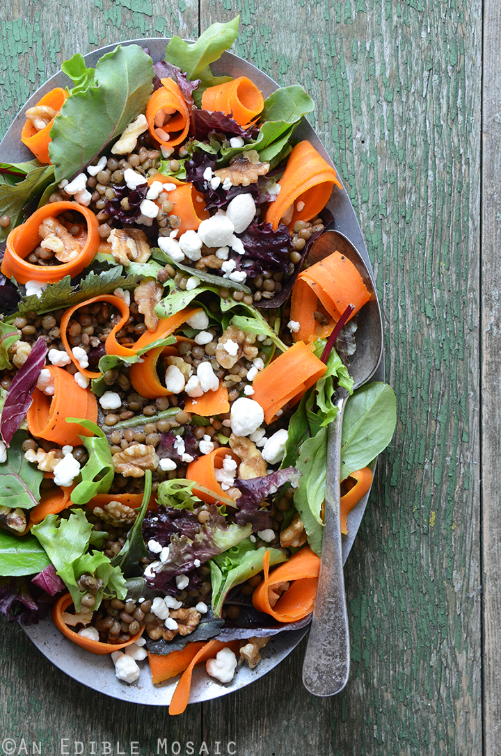 French Lentil, Carrot Curl, and Moroccan Mint Sauce Salad