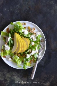 The Best Creamy Blue Cheese Dressing on Pear Hazelnut Salad Overhead View