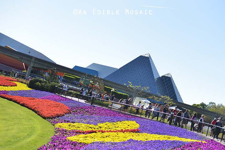 Sea of Flowers at Epcot