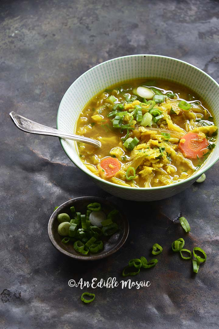 Front View of AIP Paleo Bone Broth Cabbage Detox Soup with Scallion