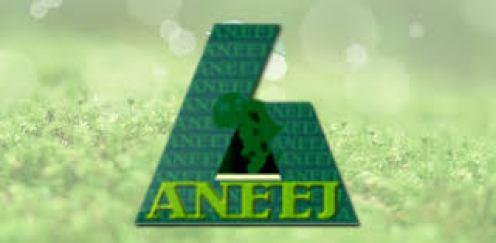 aneej_logo