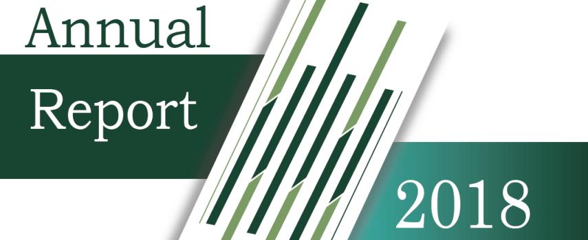 ANEEJ Annual Report 2018