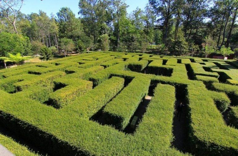 Taman Labirin untuk spot foto