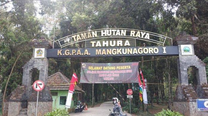 Taman Hutan Rakyat