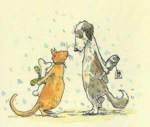 Смешная картинка про кошку с собакой