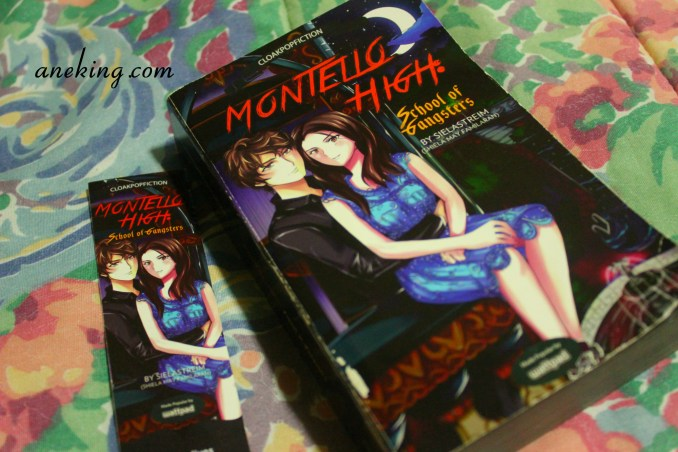 Montello High School Of Gangsters book