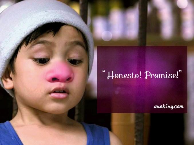 honesto promise