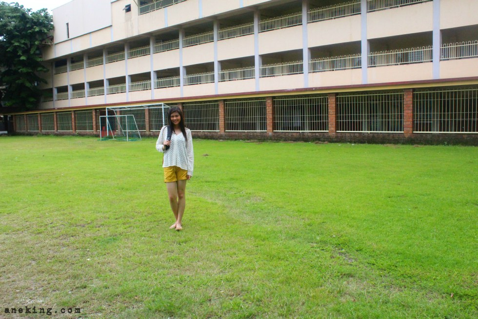 angelicum-college-st-thomas-building