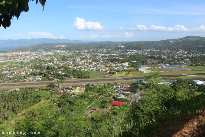 view-from-lignon-hill