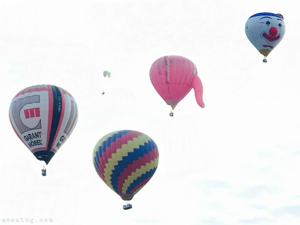21st-hot-air-balloon-festival-22