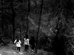 Three youngsters on a hillside appear ready to enter a gray forest.