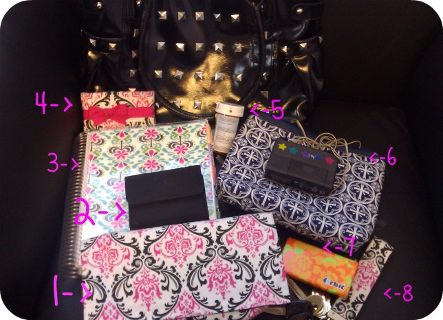 Contents of a Spoonie's Purse