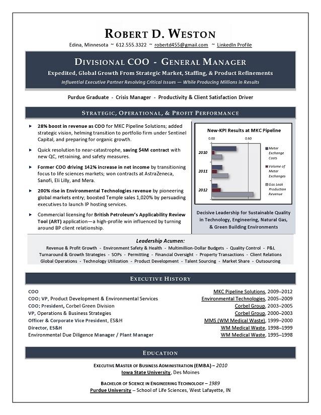 Best Executive Resume Writer Sample Resume COO & GM Resume