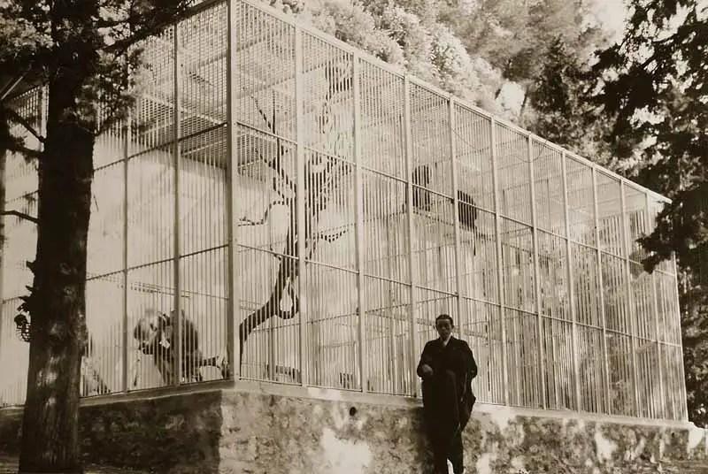 """Serge Voronoff en el zooógico en el cual el """"científico loco"""" obtenía sus especímenes."""