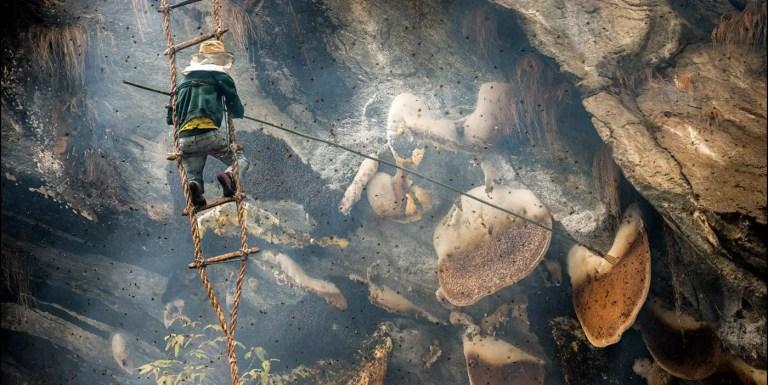 La miel de montaña de Lamjung, la miel más preciada del mundo