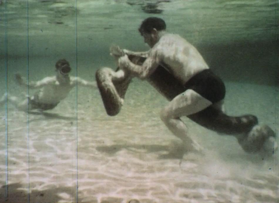 Ross Allen luchando contra una anaconda.