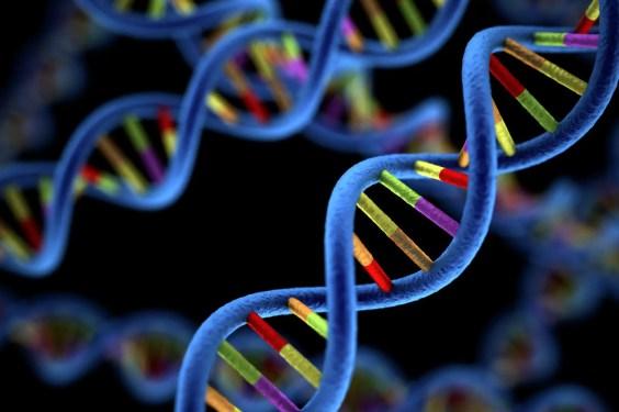 Doble hélice genética.