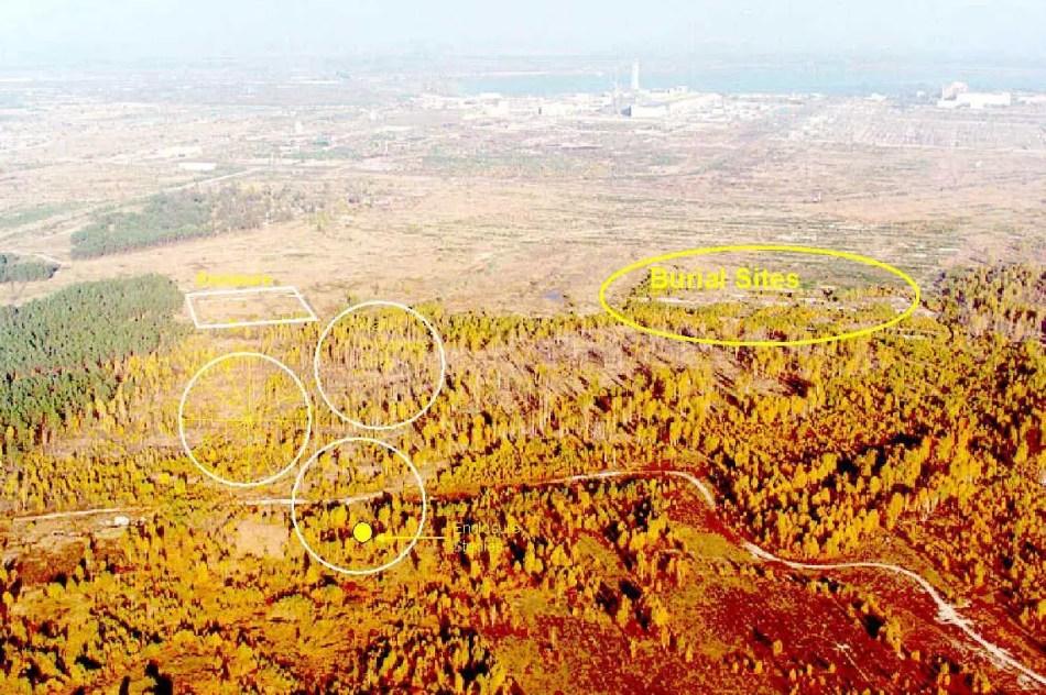 Fotografía aérea de los bosques de Chernobyl.