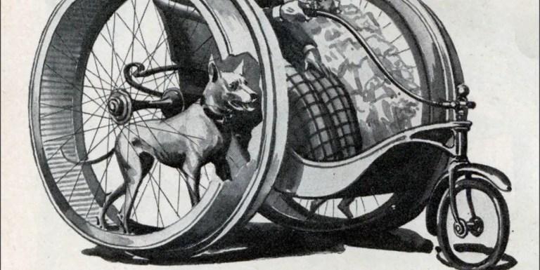 Los increíbles vehículos tirados por perros del siglo XIX