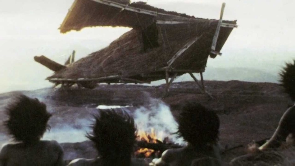 Fotografía de un avión hecho con cañas y fibras.